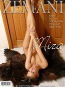 Introducing Miza