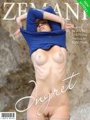 Ingret - Presenting Ingret