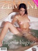 Capelli Bagnati
