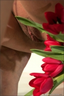 Iris in Tulip gallery from MPLSTUDIOS by Alexander Fedorov - #11