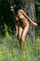 Kamilla in Tigress gallery from MPLSTUDIOS by Alexander Fedorov - #3