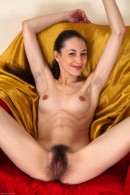 Jennifer in young and hairy gallery from ATKPETITES - #14