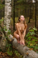 Vika in Autumn gallery from MPLSTUDIOS by Alexander Fedorov - #14