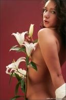 Lika in Sensual Flower gallery from MPLSTUDIOS by Alexander Fedorov - #7