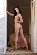 Anie Darling in Folea gallery from METART by Erro - #1