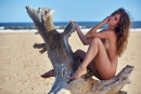 Lily C in Life's A Beach gallery from HOLLYRANDALL by David Merenyi - #7