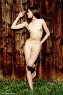 Antea in Wood gallery from ERROTICA-ARCHIVES by Erro - #9