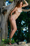 Hailey in Tree Nymph gallery from METART by Matiss - #7