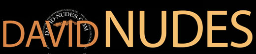 DAVID-NUDES 520px Site Logo