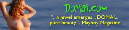 DOMAI banner