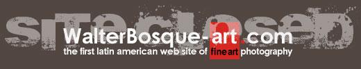 WALTERBOSQUE 520px Site Logo