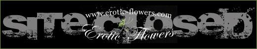 EROTIC-FLOWERS 520px Site Logo