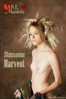 Stassanna